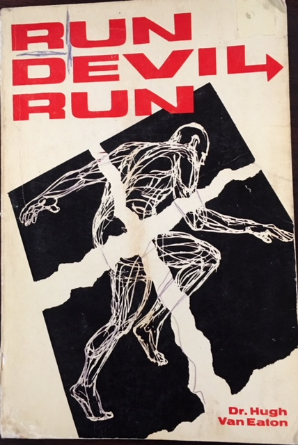 Image for Run Devil Run