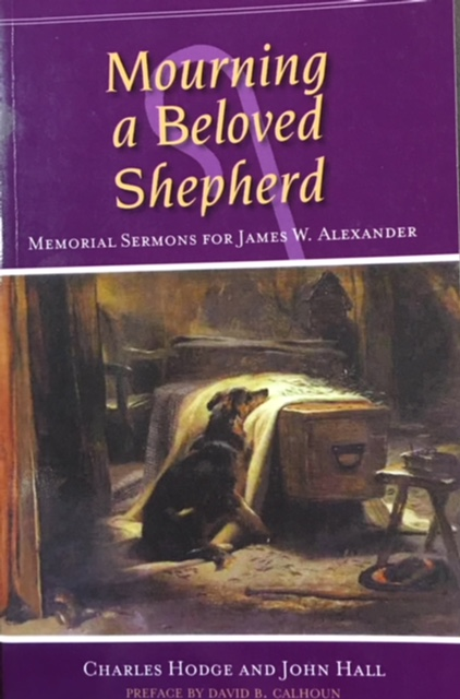 Image for Mourning a Beloved Shepherd