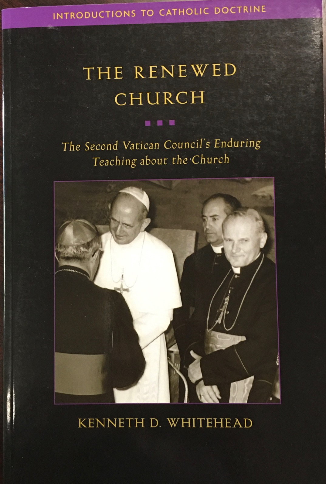 Image for The Renewed Church: The Second Vatican Council's Enduring Teaching about the Church (Introductions to Catholic Doctrine)