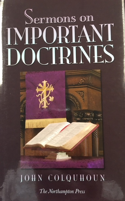 Image for Sermons on Important Doctrines