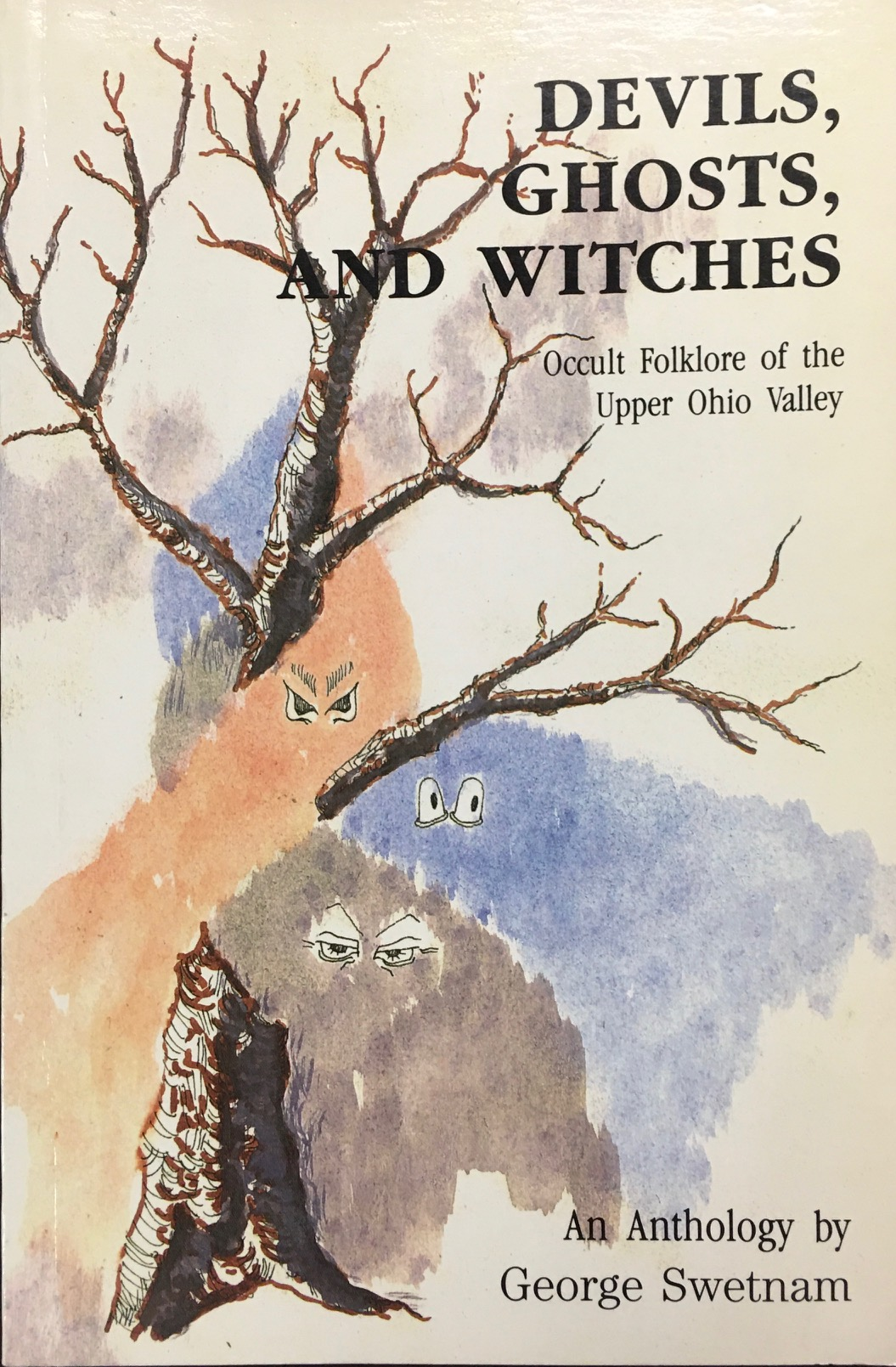Image for Devils, Ghosts and Witches: Occult Folklore of the Upper Ohio Valley