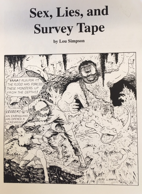 Image for Sex, Lies, and Survey Tape