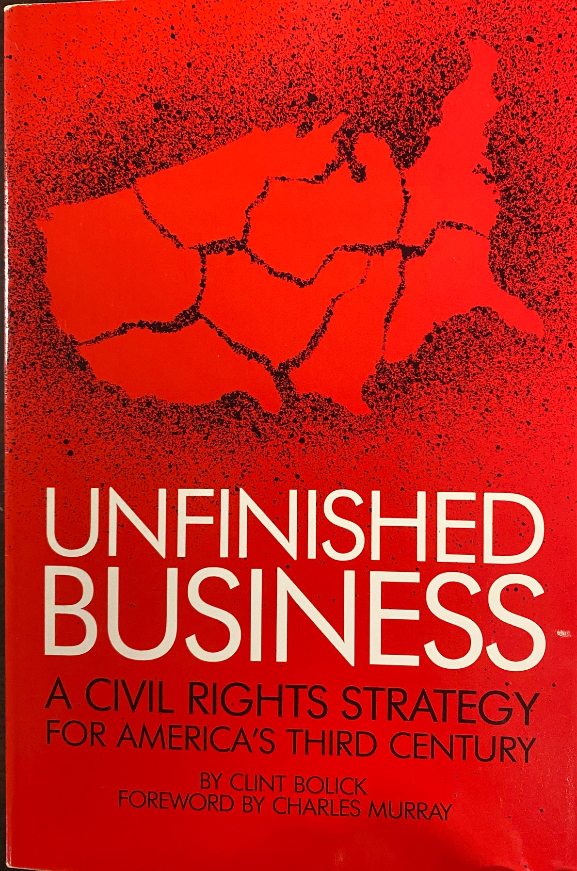 Image for Unfinished Business: A Civil Rights Strategy for America's Third Century