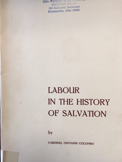 Image for Labour in the History of Salvation