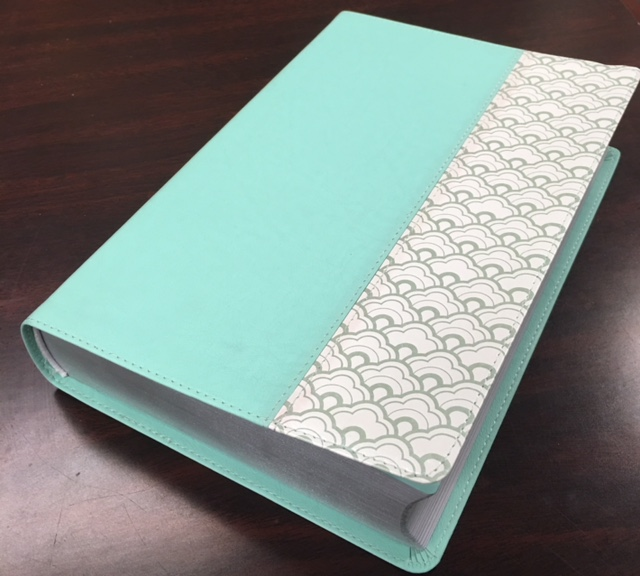 Image for HCSB Giant Print Reference Bible, Mint Green LeatherTouch, Indexed