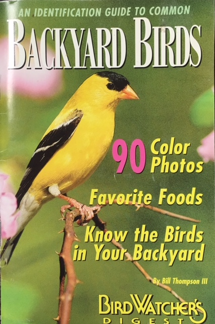 Image for An Identification Guide to Common Backyard Birds - A Special Publication from Bird Watcher's Digest