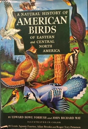 Image for A Natural History of American Birds of Eastern and Central North America