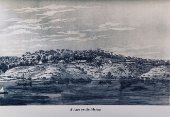Image for The Source of the Nile: the Lake Regions of Central Africa - A picture of explorations