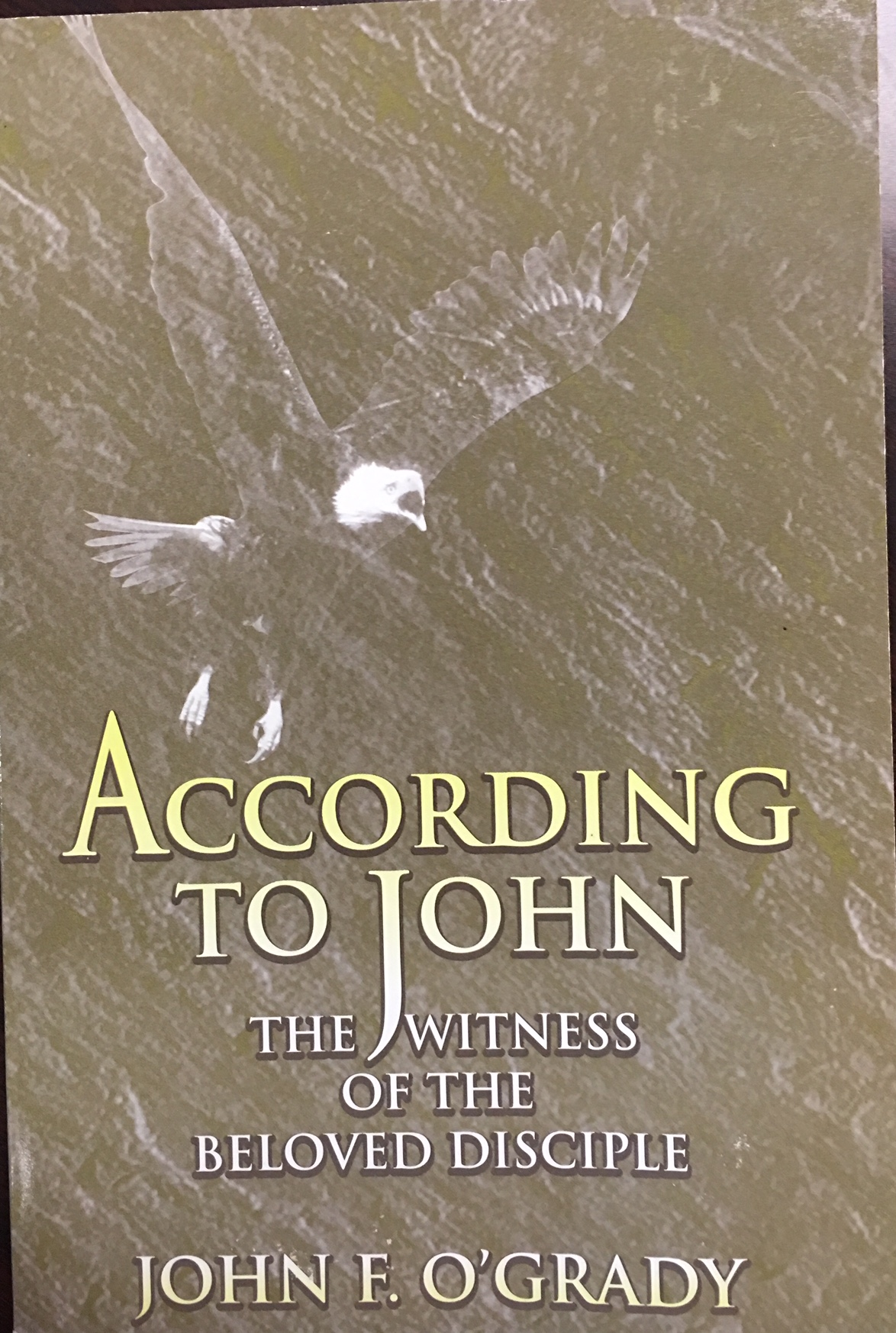 Image for According to John: The Witness of the Beloved Disciple