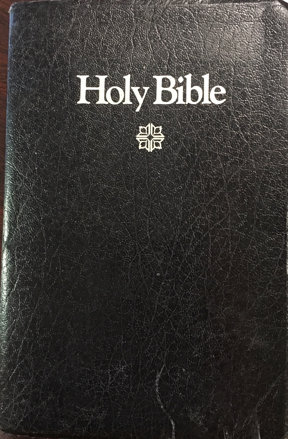 Image for Holy Bible - The International Children's Bible (New Century Version)