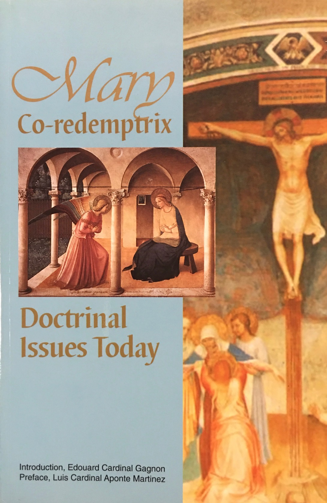 Image for Mary Co-redemptrix Doctrinal Issues Today