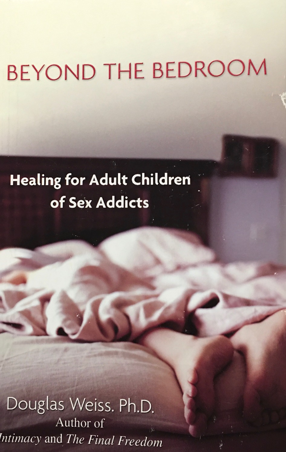 Image for Beyond the Bedroom: Healing for Adult Children of Sex Addicts