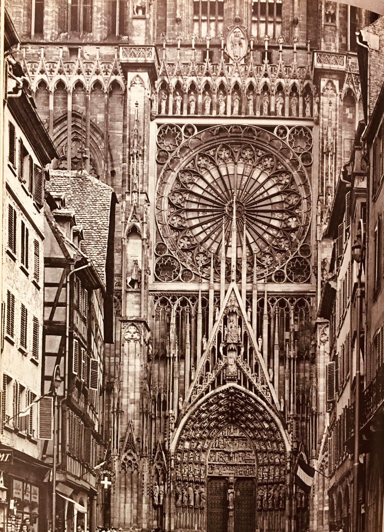 Image for French Cathedrals - 3rd Edition Revised