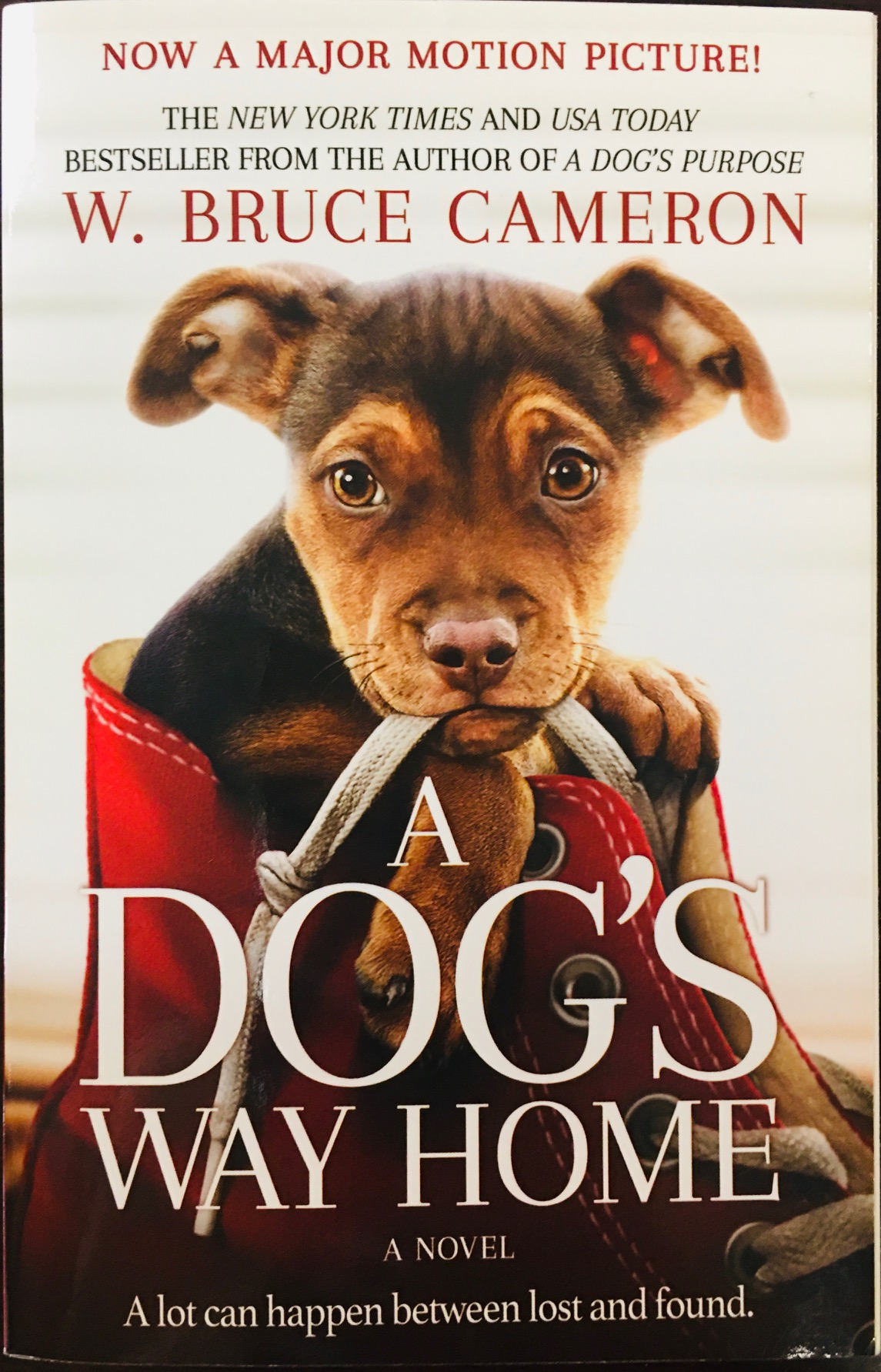 Image for A Dog's Way Home Movie Tie-In: A Novel