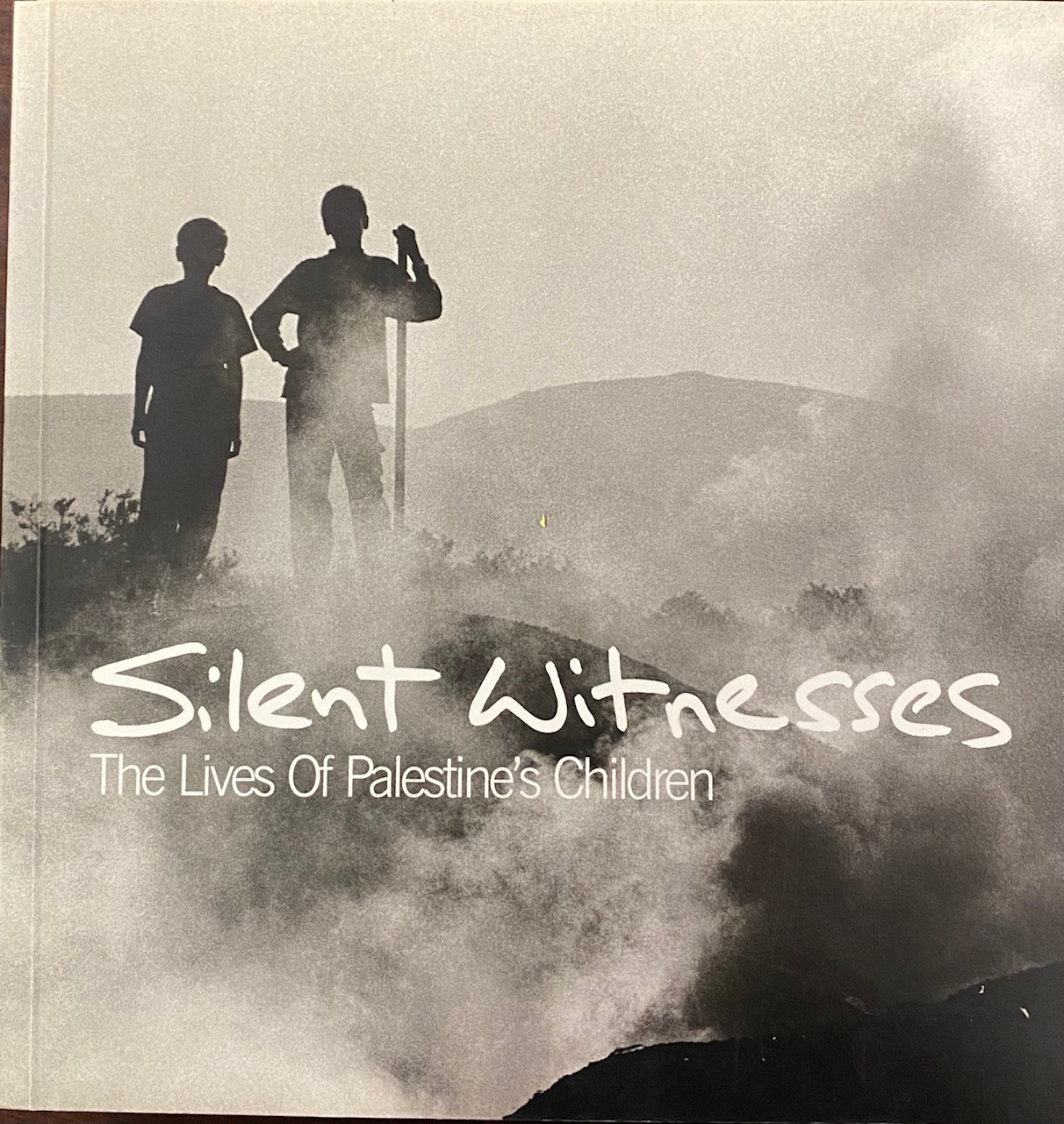 Image for Silent Witnesses: The Lives of Palestine's Children